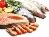 魚介類の画像